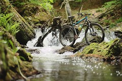 White Water Solaris (all martn) Tags: mountain bike all steel trail mtb solaris hardtail stahl cotic