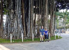 (Mitchell Lafrance) Tags: travel vacation usa holiday hawaii oahu waikikibeach banyantree 2014 mitchelllafrance pageceline celinepage lafrancemitchell