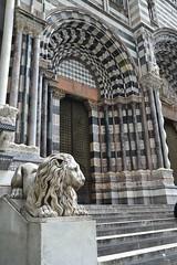 San Lorenzo Lion (explored) (leroygp) Tags: cathedral lion doorway genoa