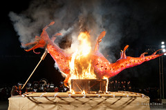 20160619-26-Dark MOFO 2016 Ogoh-ogoh burning ceremony (Roger T Wong) Tags: winter sculpture festival night fire australia burning burn tasmania hobart 2016 ogohogoh papermachie sony2470 rogertwong darkmofo sel2470z sonyfe2470mmf4zaosscarlzeissvariotessart sonya7ii sonyilce7m2 sonyalpha7ii macquarepoint weafyseadragon