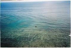 Always small (misscoi_2611) Tags: sea ocean water