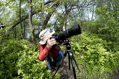 I Got This! (Roger Daigle) Tags: lake ontario nikon photographer mud brother ottawa d3s