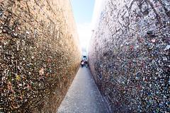 Bubblegum Alley, San Luis Obispo (melfoody) Tags: california canon bubblegum 12mm manualfocus sanluisobispo bubblegumalley ultrawideangle rokinon 5dmkiii