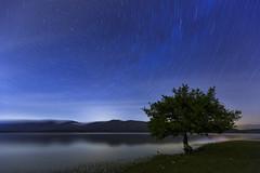 A night with the stars (Rafael Dez) Tags: espaa noche agua arboles paisaje pantano estrellas nocturna alava reflejos largaexposicin circumpolar rafaeldez