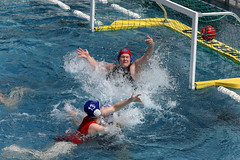 AW3Z0304_R.Varadi_R.Varadi (Robi33) Tags: summer sports water swimming ball fight women action basel swimmingpool watersports waterpolo sportspool waterpolochampionship