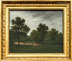 DSC8468 Paul Gauguin - El claro, 1874, Museo de Bellas Artes de Orlans (ramonmunoz_arte) Tags: de orleans muse des museo artes francia bellas beauxarts