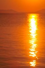 Simple One (Yohsuke_NIKON_Japan) Tags: sunset orange sun sunlight reflection water nikon shimane matsue sanin lakeshinji    d300s