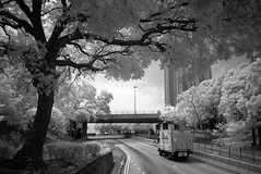 infrared road (Steve only) Tags: road trees bw ir lumix g panasonic snaps infrared vario m43 1445mm f3556 14453556 dmcgf1
