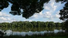Oissel - Bords de Seine (jeanlouisallix) Tags: oissel seine maritime haute normandie france paysage panorama landscape rivire fleuve eau cours deau