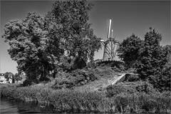 Molen van Piet Alkmaar (Sjoerd Veltman, Alkmaar) Tags: blackandwhite bw holland netherlands photography fotografie nederland alkmaar piet molen kennemerpark noordholland sjoerd 2016 veltman clarissenbolwerk
