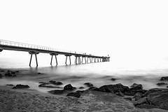 (Nicols Rosell) Tags: barcelona longexposure espaa blancoynegro beach point landscape puente spain nikon europa europe playa paisaje catalonia catalunya badalona largaexposicion pontdelpetroli d7100 blackwhrite nikond7100
