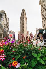 Flatiron Flowers (sean.tracy) Tags: street new york city nyc digital canon photograpy 2016
