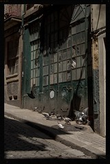 Looks like this neighborhood is going downhill (Alfred ter Wal) Tags: porto portugal doves colour faded broken windows dusty city cobbles hill slope