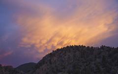 Mammatocumulus (Jeff Mitton) Tags: storm mountains colorado thunderhead cumulonimbus mammatus mammatocumulus wondersofnature earthnaturelife brownscanyonnationalmonument
