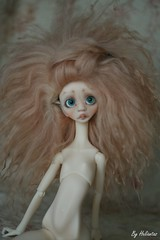 Wig commission on May (heliantas) Tags: doll handmade wig mohair bjd kane dyed faceup nefer nexeven