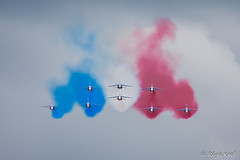 PAF [EXPLORED !] (haiwepa) Tags: france flag jet meeting airshow explore alpha drapeau tricolore alais patrouille fertalais patrouilledefrance explored fert aerodromedelafertealais