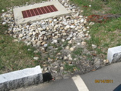 IMG_0783 (Stormwater Maintenance, LLC) Tags: problem sediment inlet curbcut catchbasin bioretention