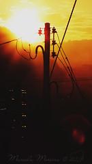 Cidade e Cor (marceladsm) Tags: city light cidade sky sun colour tree luz sol silhouette sunrise gold golden poste cu dourado wires e arvore cor fios ouro silhueta