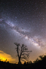 The Milky Way and a burnt tree. (slworking2) Tags: california julian unitedstates state diego via galaxy rancho milkyway parksan lacteaastronomycuyamacacuyamaca