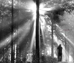 La luz (Jabi Artaraz) Tags: light sony bn zb argia digitalcameraclub euskoflickr superaplus aplusphoto jartaraz alfa350 blinkagain
