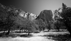 The Captain (BDurk) Tags: california park mountain nature landscape nationalpark national yosemite yosemitenationalpark elcapitan capitan