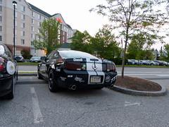 2007 Shelby GT - Rally New England 2013 (lucre101) Tags: auto charity new camp england cars sunshine monster river garden team inn e