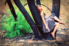 No Fairytale (Kelly McCarthy Photography) Tags: woman tree beautiful beauty fashion tattoo female forest vintage pose model dress legs retro polkadots brunette polkadotdress catchycolorsgreen owltattoo girlinatree
