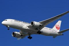 Japan Airlines (JA827J) (A Sutanto) Tags: sf coyote ca usa japan america plane point airport san francisco sfo jet international boeing jl airlines 787 ksfo b787 788 dreamliner