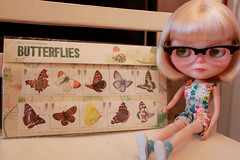 172-365 Flutterbys!