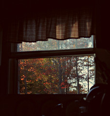 looking out at autumn (taralees) Tags: autumn home october kitchenwindow theviewfromhere rabbitridge vision:text=076 vision:night=085