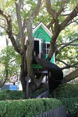 Owl's House Slide