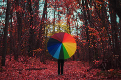Whispers (mattias tyllander) Tags: fall colors umbrella colours sweden