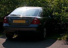 ford0425 (VWGolf65) Tags: ford parking hedge mondeo