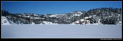 Hawk Ridge in Winter (Kurokami) Tags: life park trees winter wild lake snow ontario canada ski tree ice pine snowshoe la george skiing crossing cross hawk snowy wildlife parks canadian deer ridge crosscountry killarney snowshoeing wilderness icy cloche ridges provincial