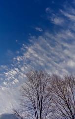 DSC02449 (johnjmurphyiii) Tags: autumn sky usa clouds connecticut hillside cromwell originaljpeg johnjmurphyiii 06416 sonycybershotdsch90 vision:mountain=0927 vision:outdoor=099 vision:sky=0977 vision:clouds=0967