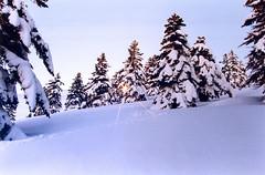 Mountain Sunset !!! (GEORGE TSIMTSIMIS) Tags: snow winter mountains sun trees nature film fujicolor pentax pentaxlx analoguephoto 35mmphoto fujichrome velvia 50asa slides positiveemulsion adventure mountaineering climb filter hoya sunburst starsix sunset pentaxmsmc28mm