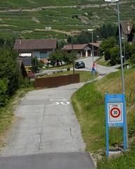 Orsieres - Martigny (12.07.13) 144 (rouilleralain) Tags: valais sembrancher valdentremont stbernardexpress bovernier viafrancigena
