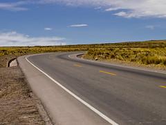 Somewhere near Arequipa (mardruck) Tags: road travel vacation mountain peru southamerica 50mm wildlife perú latinoamerica f18 18 zuiko arequipa colcacanyon américadosul sudamérica cañondelcolca omzuiko ommount olympuspenep3
