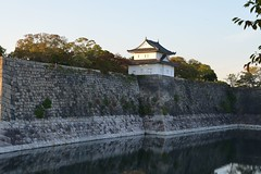 天守閣 (mawingchung,,,) Tags: park sky macro tree tower japan nikon 大阪 日本 微距 d800e
