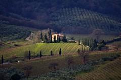 Spiraglio (luporosso) Tags: italy naturaleza nature nikon italia country natura campagna tuscany chianti toscana naturalmente nikond300s bestofblinkwinners