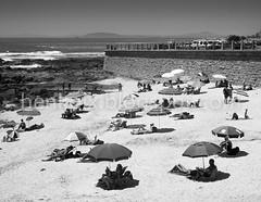 Summer-5081 (Henk Kruger pics) Tags: summer holiday color colour beach umbrella southafrica reading sand tan capetown tourist bikini sunbathing sunnyday westerncape
