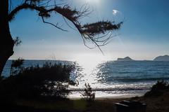 Bellows AFB 4 (rayymundo) Tags: beach landscape hawaii oahu sunny bellows afb wate