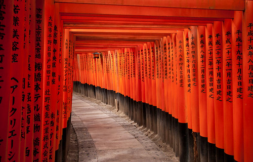 Torii Tunnel at Fushimi Inari Shrine in Kyoto
