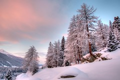 Trees shine red by sunrise - Oberwald (Sinar84 - www.captures.ch) Tags: morning blue trees red sky cloud white snow mountains yellow stone sunrise schweiz switzerland day swiss gray lila wallis swissalps swissmountains goms oberwald pwwinter