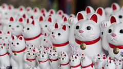 Some of Gotokuji's maneki neko... (Eric Flexyourhead) Tags: detail cute japan temple tokyo bokeh repetition kawaii 日本 東京 manekineko 169 setagaya fragment 75mm かわいい 世田谷区 setagayaku zd 招き猫 豪徳寺 gotokuji gotokujitemple olympusem5 mzuikodigital75mmf18