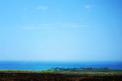 Kohala Coast (heartinhawaii) Tags: ocean palms hawaii coast shoreline bluesky palmtrees coastal bigisland shotfromcar kohalacoast southkohala canons90 bigislandinfebruary hawaiiinfebruary