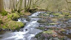 Im Tal der Dhnn (MoritzP) Tags: canon eos hiking bach nrw bergischesland mrz frhling wanderung 2014 dhnn 1100d mariainderaue