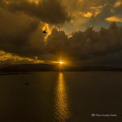 For the PEACE (Pilar Azaña Talán ) Tags: españa sunrise europa galicia amanecer pontevedra ogrove seleccionar pilarazañatalán copyright©pilarazaña