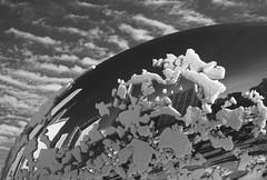 cloud gate with red filter (jlodder) Tags: blackandwhite bw chicago canon us illinois unitedstates kodak iso400 trix milleniumpark cloudgate thebean anishkapoor redfilter sunpak centralcamera t50 lomographystore newfd50mmf2 notthepolarvortex giftcam