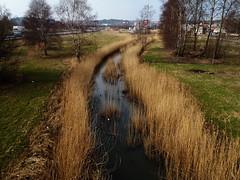 Å (Eva the Weaver) Tags: winter göteborg early spring stream ditch sweden gothenburg frölunda mild